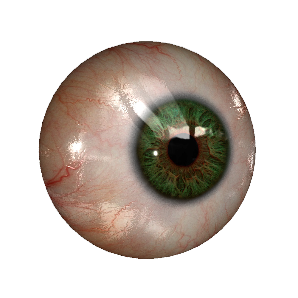 Real Eye File PNG Image