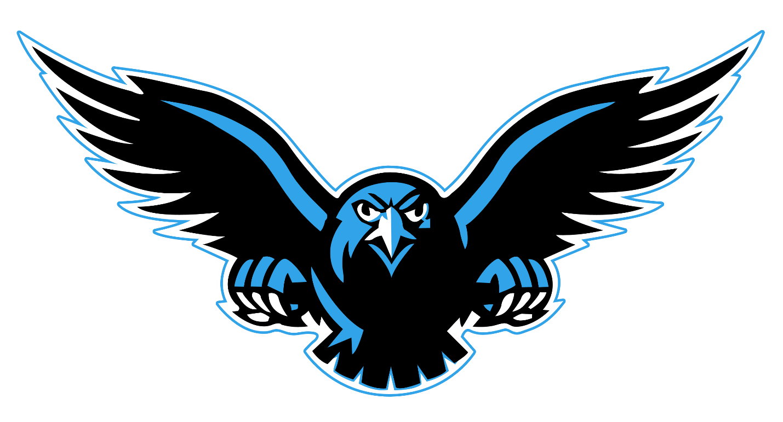 Download Falcon Transparent Background HQ PNG Image ...