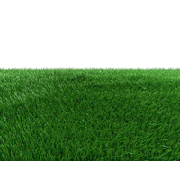 Field Transparent Background PNG Image