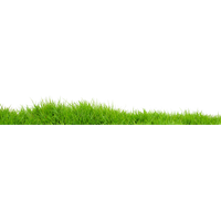 Field Transparent Image PNG Image