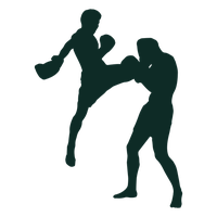 Fighting Photos PNG Image