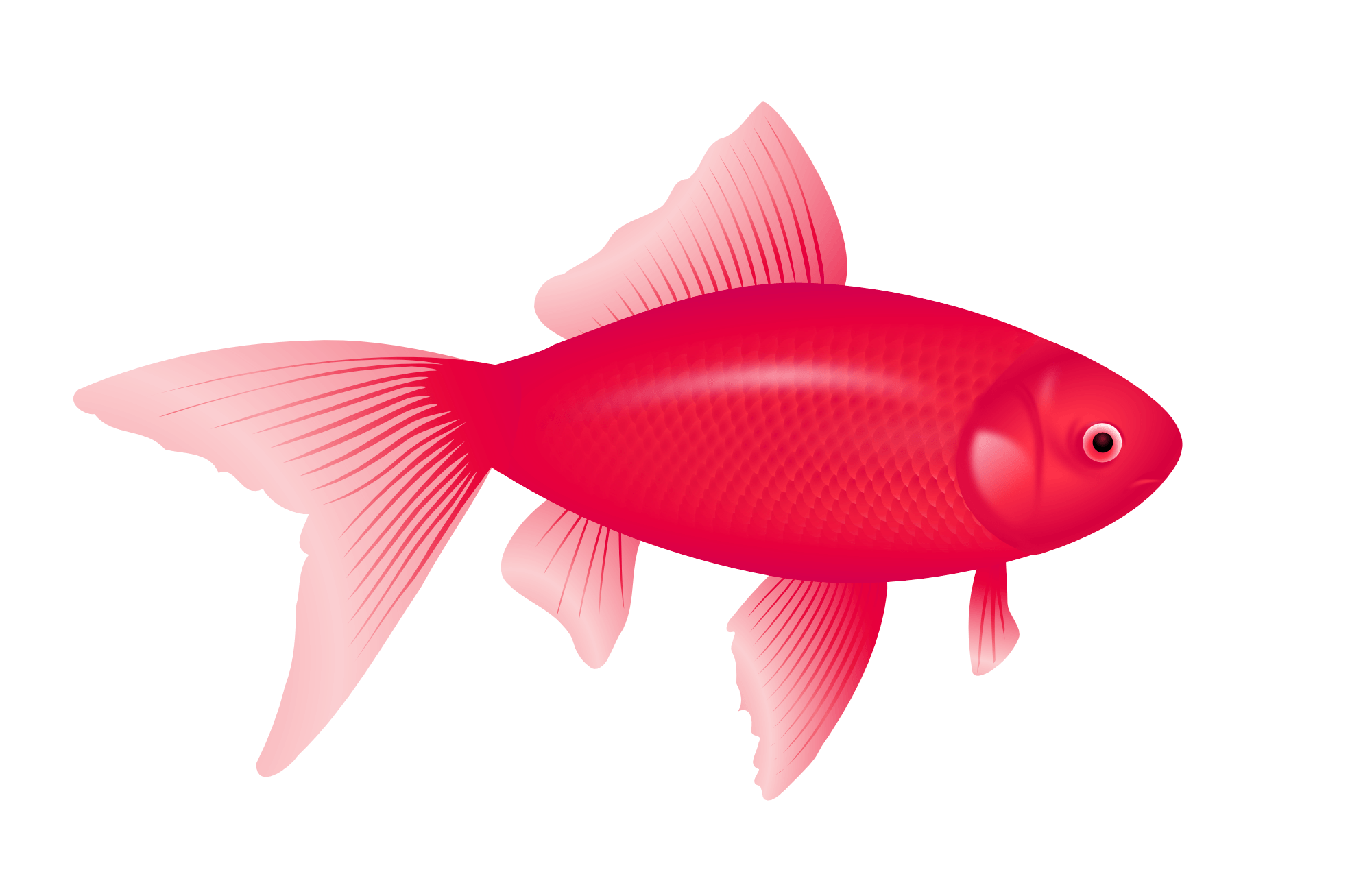 Purple Fish Png Image PNG Image