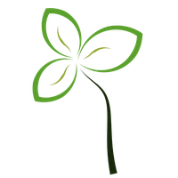 Abstract Flower Free Download Png PNG Image