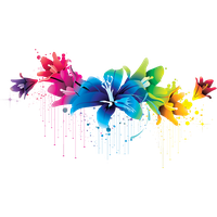 Colorful Flowers Image PNG Image
