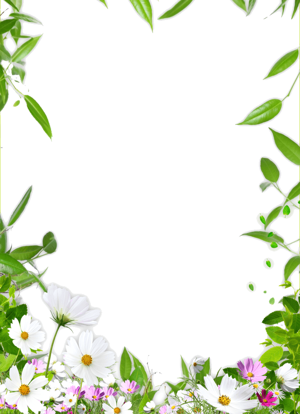 Download Picture Ceiling Flower Frame Border Drawing HQ ...
