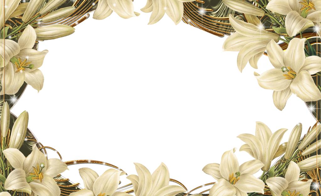 Download Picture Flower Frame Design Floral Border HQ PNG ...