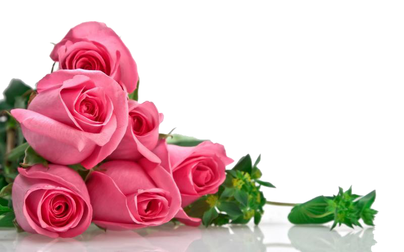 Pink Roses Flowers Bouquet Transparent Image PNG Image