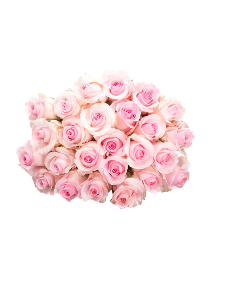 Download Pink Roses Flowers Bouquet HQ PNG Image   FreePNGImg