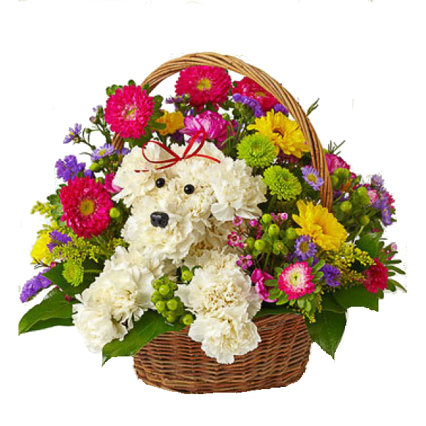 Birthday Flowers Bouquet Transparent Image PNG Image