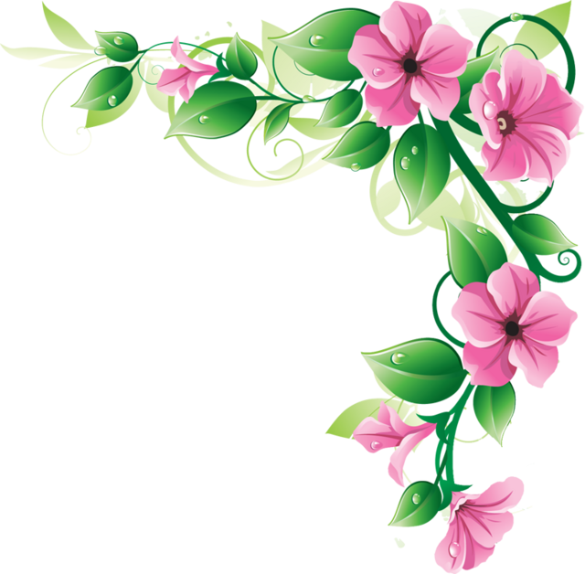 Flowers Borders Png Image PNG Image