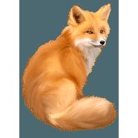 http://www.freepngimg.com/thumb/fox/2-fox-png-image-download-picture-thumb.png