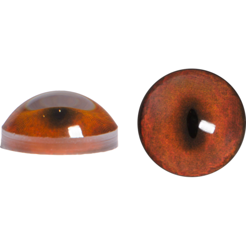 Fox Eyes Transparent PNG Image