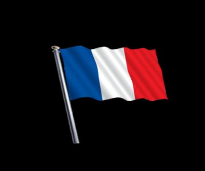 Download France Flag Png Hd Hq Png Image Freepngimg