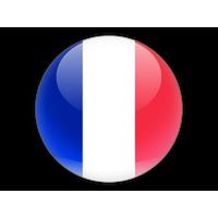 Download France Flag Png Picture Hq Png Image Freepngimg