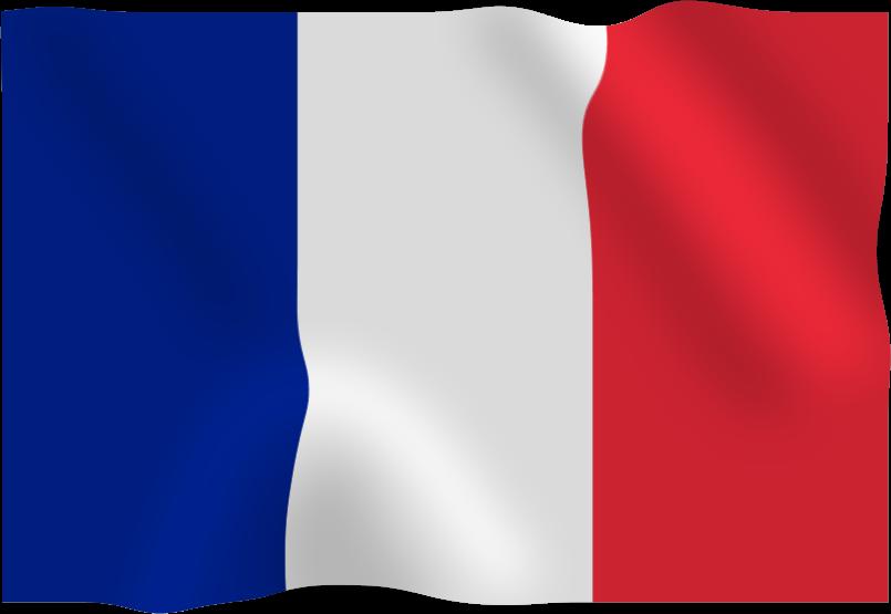 Download France Flag Png Hq Png Image Freepngimg