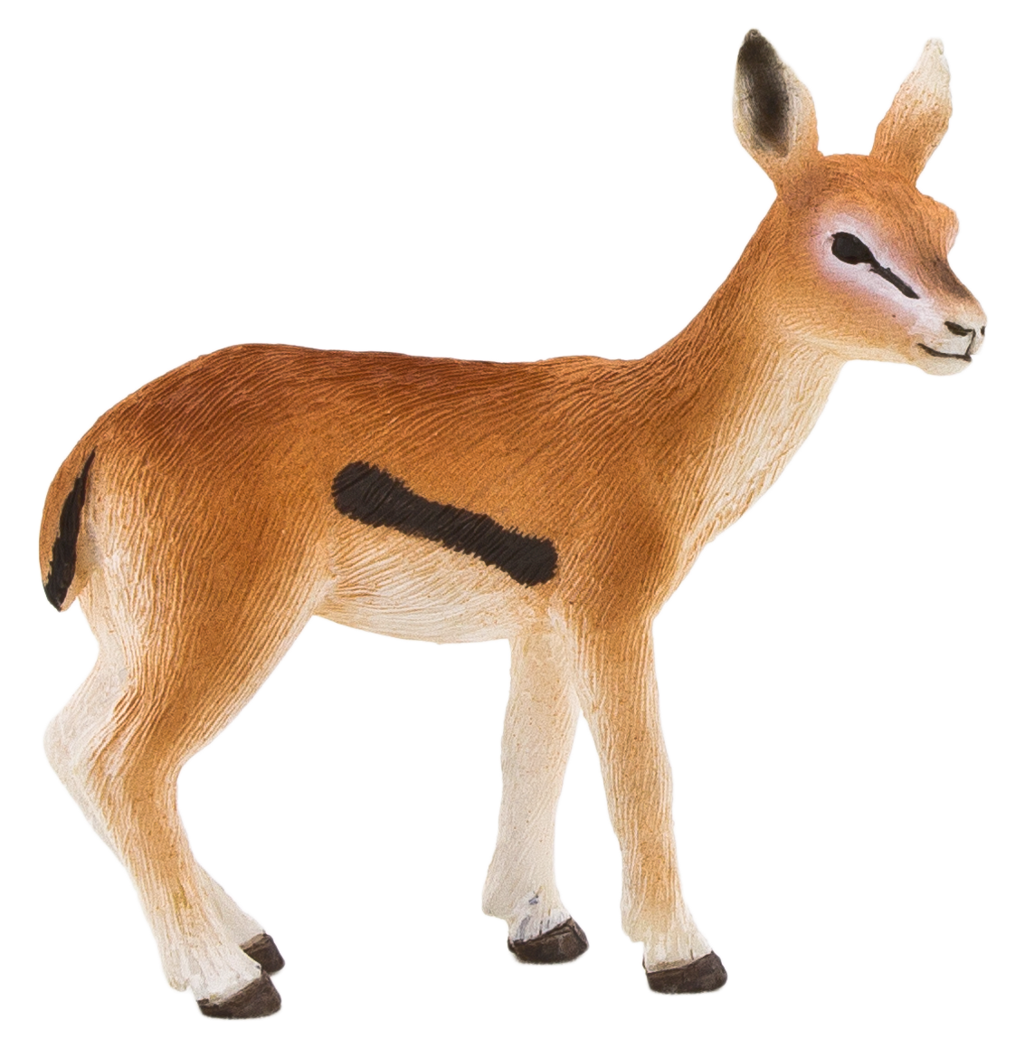 Gazelle Transparent Background PNG Image