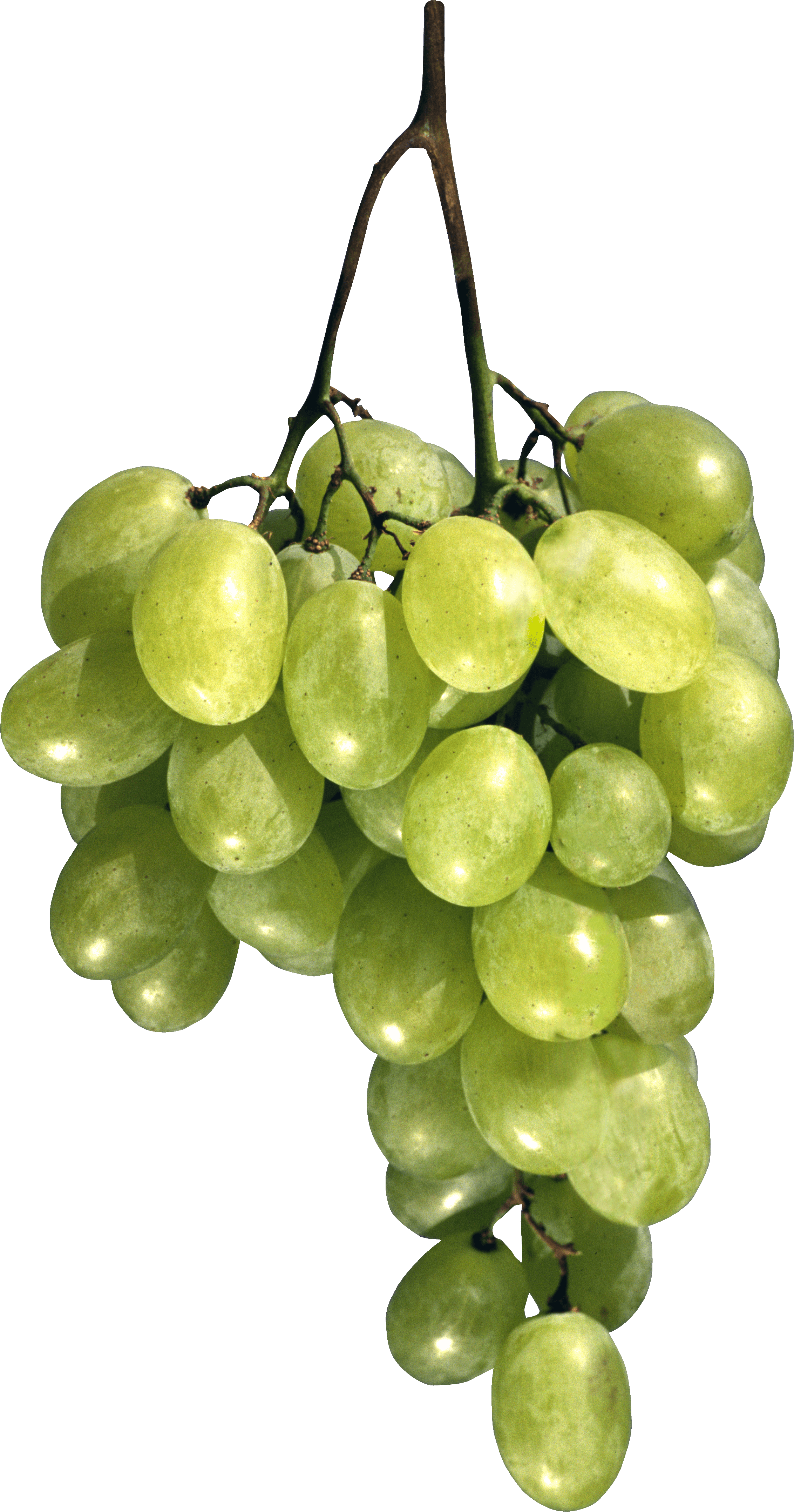 Green Grape Png Image PNG Image