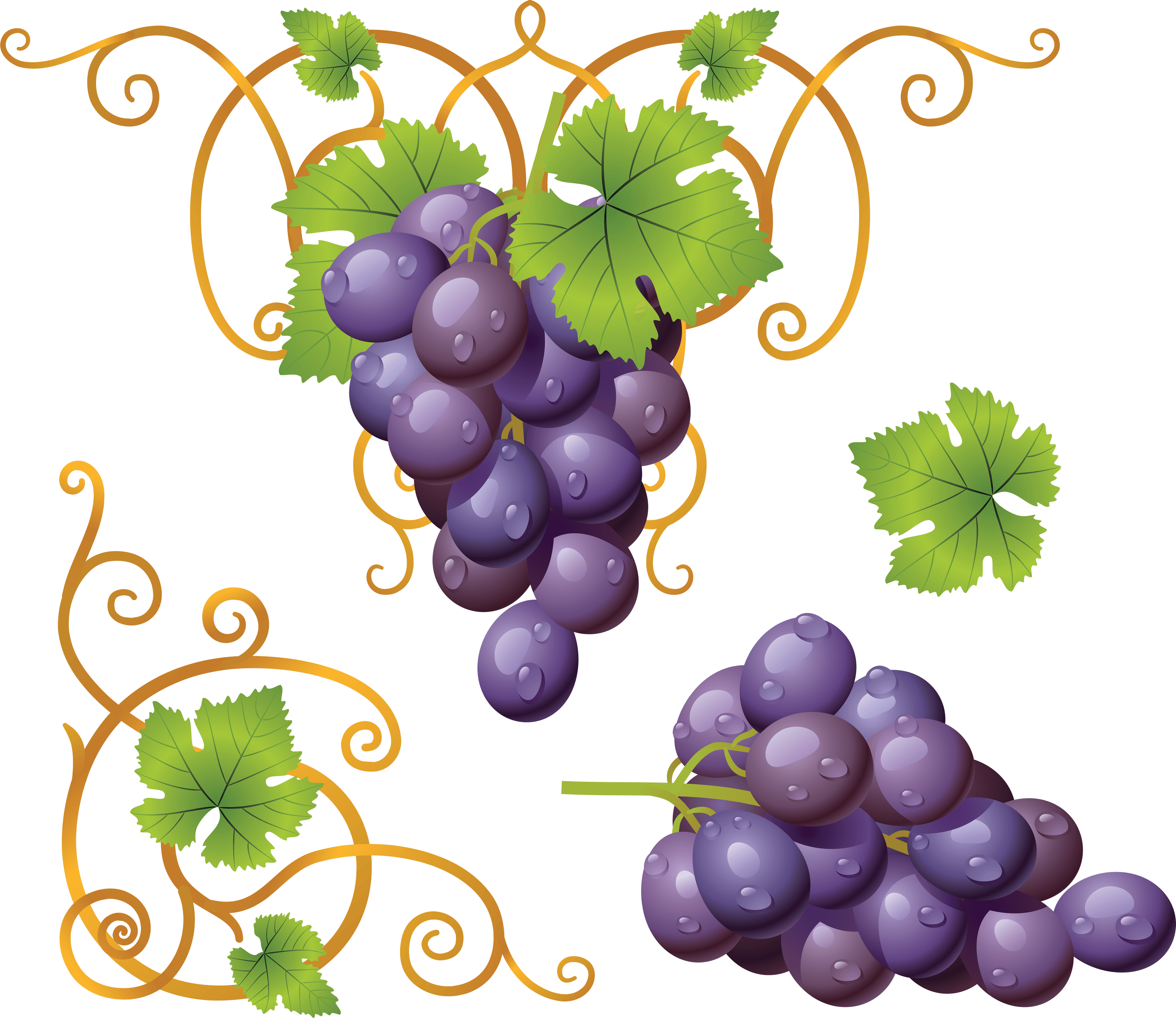 Grape Png Image PNG Image