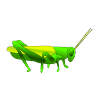 Grasshopper Hd PNG Image