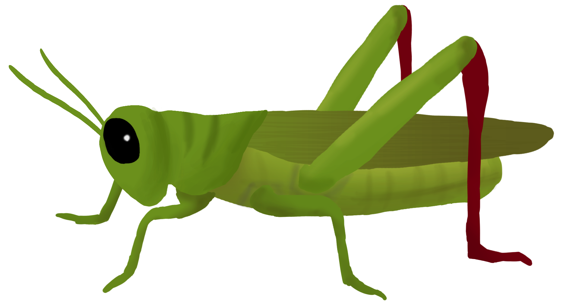 Grasshopper Clipart PNG Image