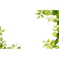 Green Leaves Frame Png PNG Image