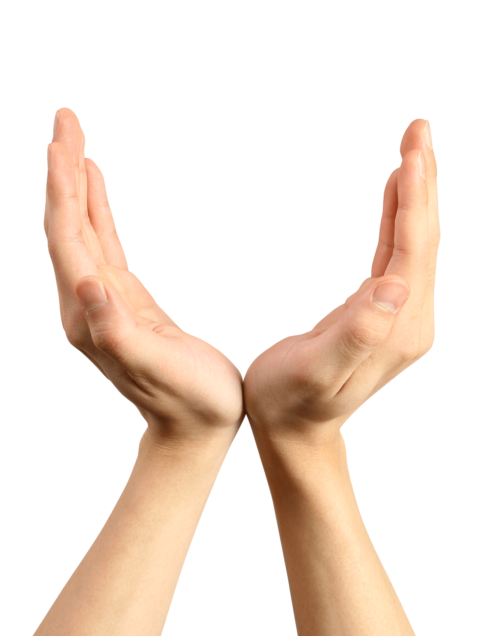 Download Hands Png Hand Image Hq Png Image Freepngimg Download hands png images transparent backgrounds pictures from the below gallery. hands png hand image hq png image
