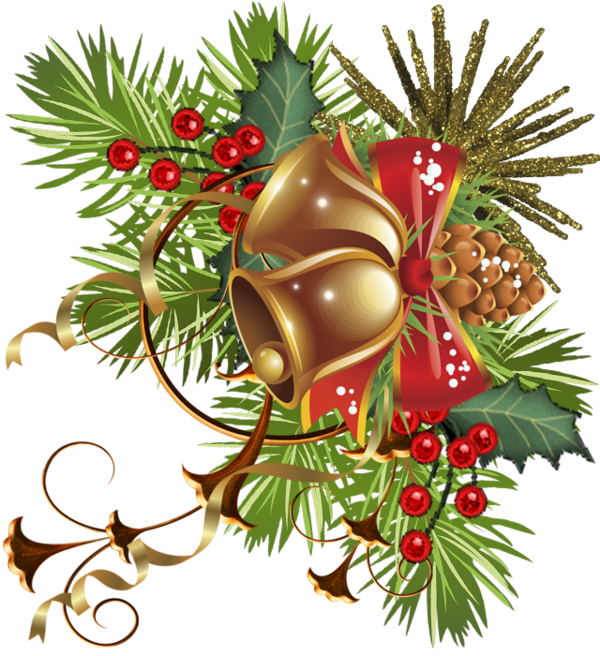 Christmas Ornament Carol Fir Pine Family For Ideas PNG Image