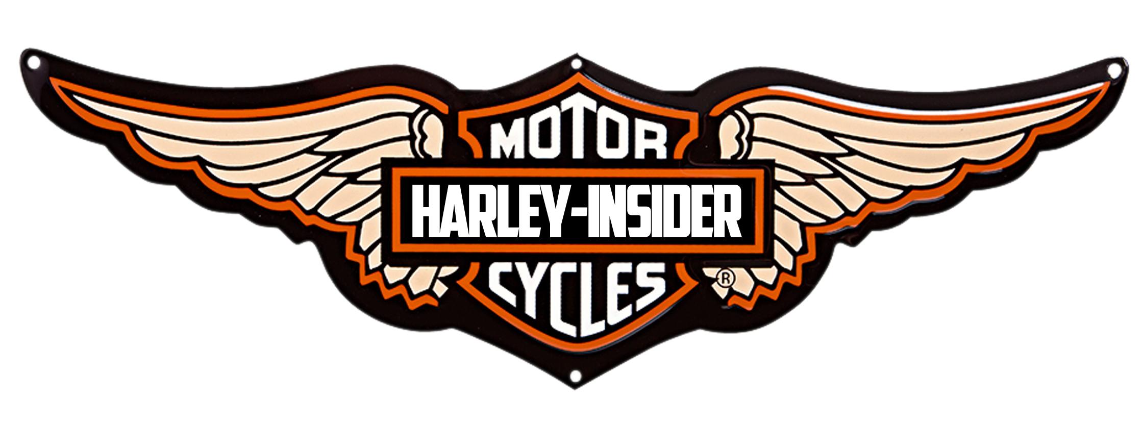 Download Harley Davidson Logo Wings Png HQ PNG Image ...