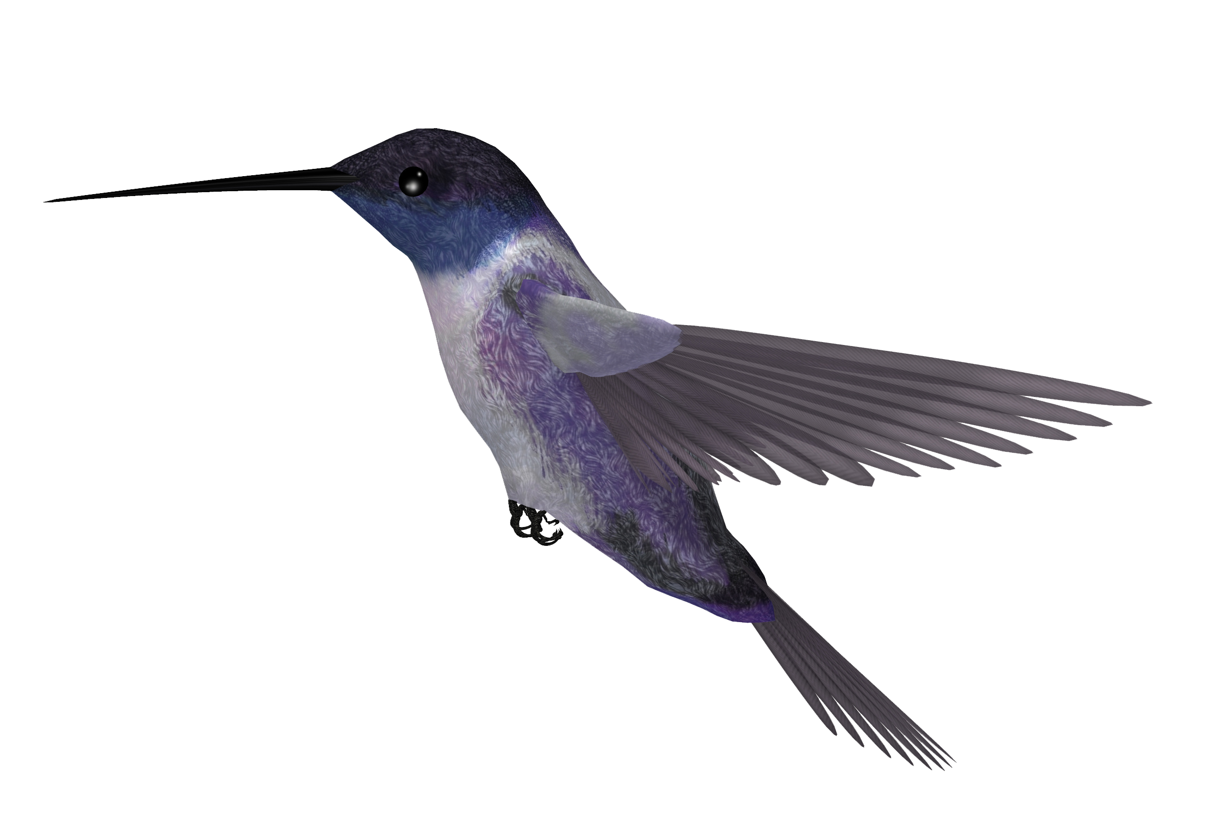 Hummingbird Png Picture PNG Image