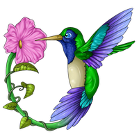 Hummingbird Tattoos Free Download Png PNG Image