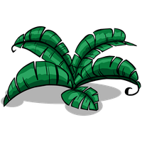 Jungle PNG Image