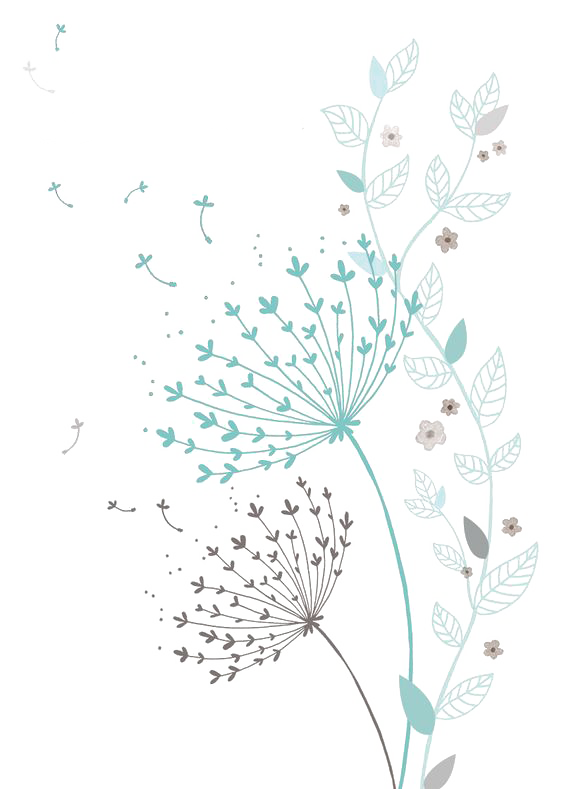 Colored Dandelion HD PNG Download Free PNG Image