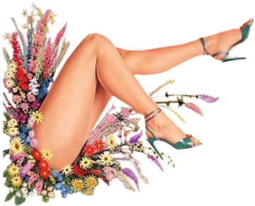Legs Png File PNG Image