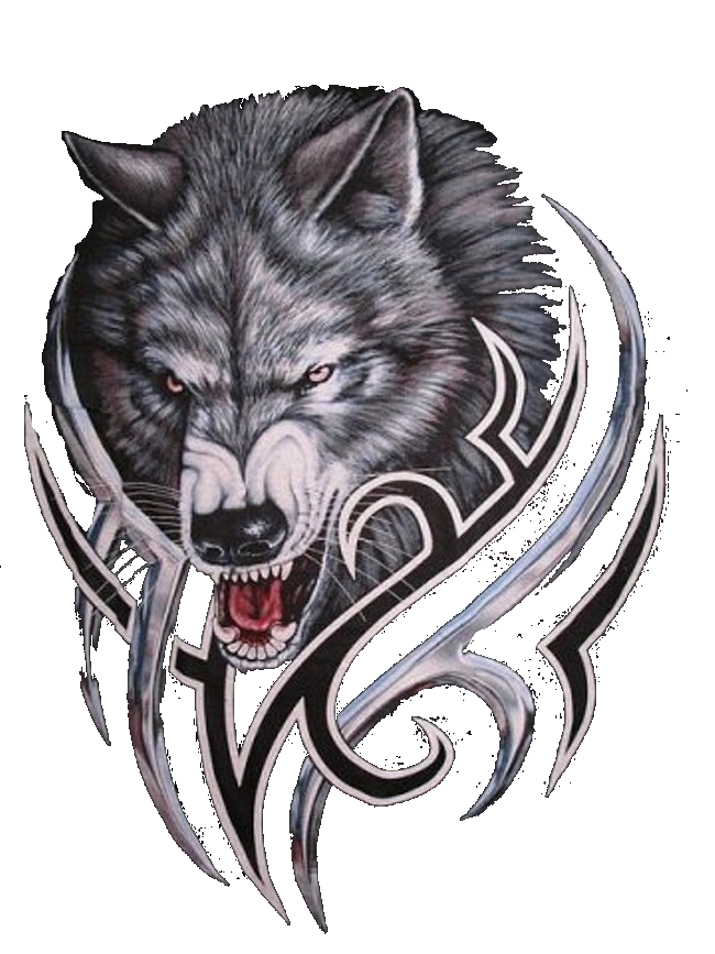 Gray Werewolf Wolf Bitcoin Logo PNG Download Free PNG Image