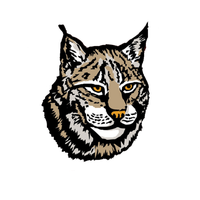 Lynx Png Image PNG Image