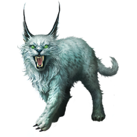 Lynx Png Clipart PNG Image