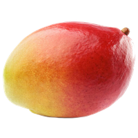 Mango Picture PNG Image