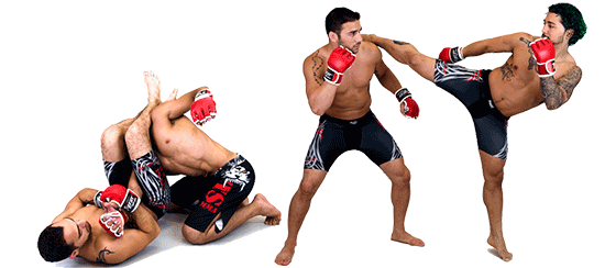 Mma Free Download PNG Image