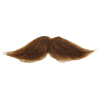 Moustache Free Download Png PNG Image