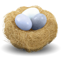 Nest Png Picture PNG Image