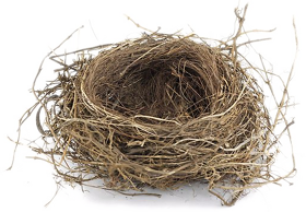 Nest Free Download Png PNG Image