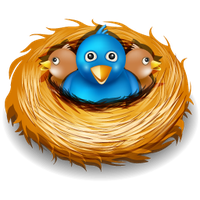 Nest High-Quality Png PNG Image
