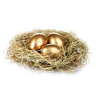 Nest Download Png PNG Image