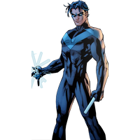 Nightwing Photos PNG Image