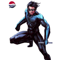 Nightwing Photo PNG Image