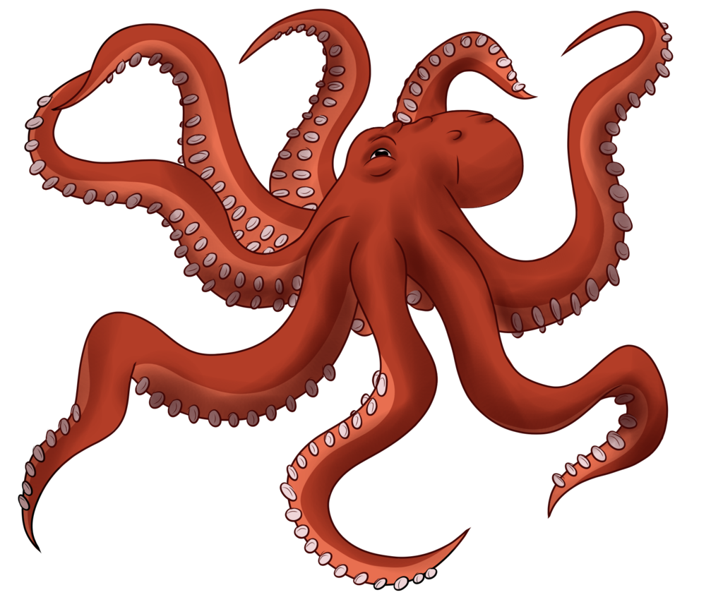 Octopus Toy Image PNG Image High Quality PNG Image