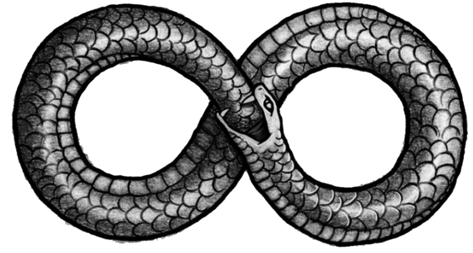 Ouroboros Png Picture PNG Image