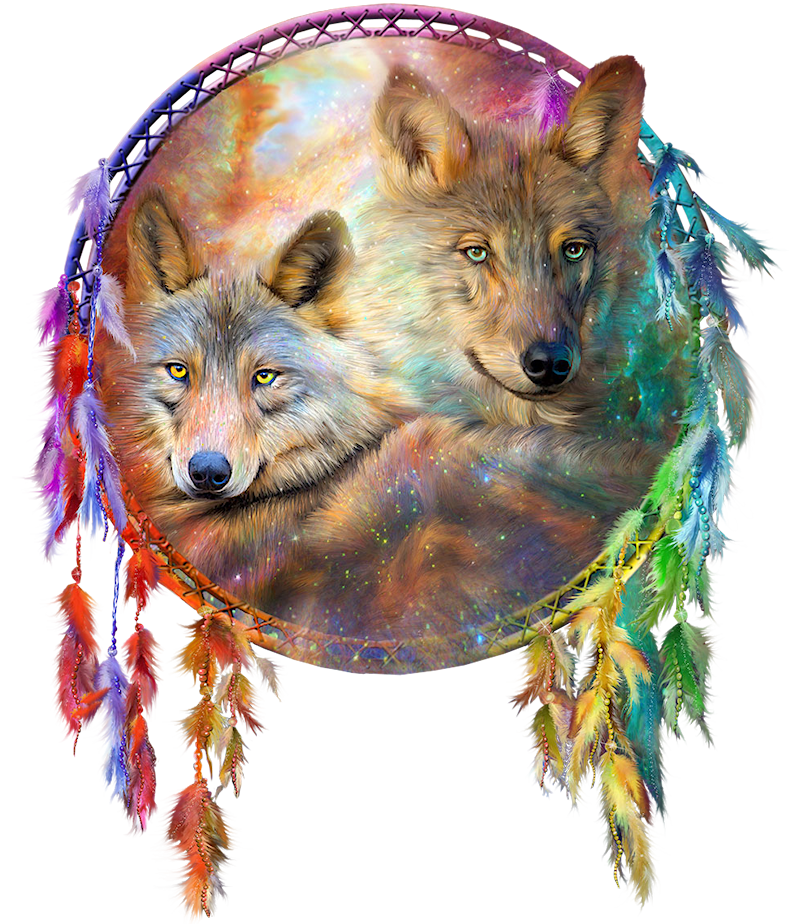 Gray Art Dreamcatcher Craft Wolf Painting PNG Image