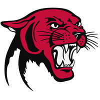 Panther Png Picture PNG Image