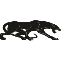 Panther Png Pic PNG Image